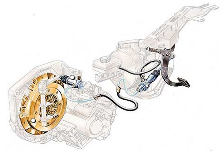 Click image for larger version  Name:clutch inside.JPG Views:36 Size:46.9 KB ID:178710