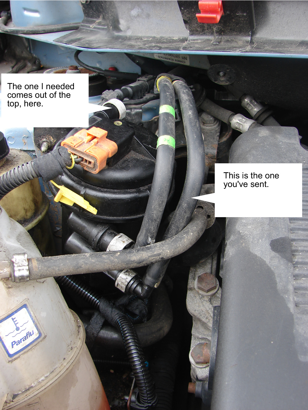 Click image for larger version  Name:MultiplaFuelFilter.jpg Views:136 Size:526.9 KB ID:78176