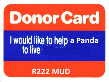 Click image for larger version  Name:R222MUD.jpg Views:36 Size:65.5 KB ID:133180